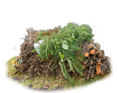green waste type